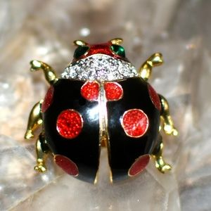 Jewelry - Adorable Black Red Green Ladybug Lapel Pin NWT